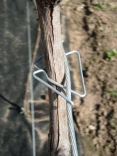 Metalinis tvirtinimas Vinclip cinkuotas