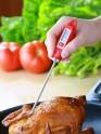 Termometras maistui matuoti