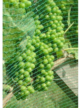 Vynuogių kekių apsauga nuo paukščių ir krušos 80 cm pločio tinklas